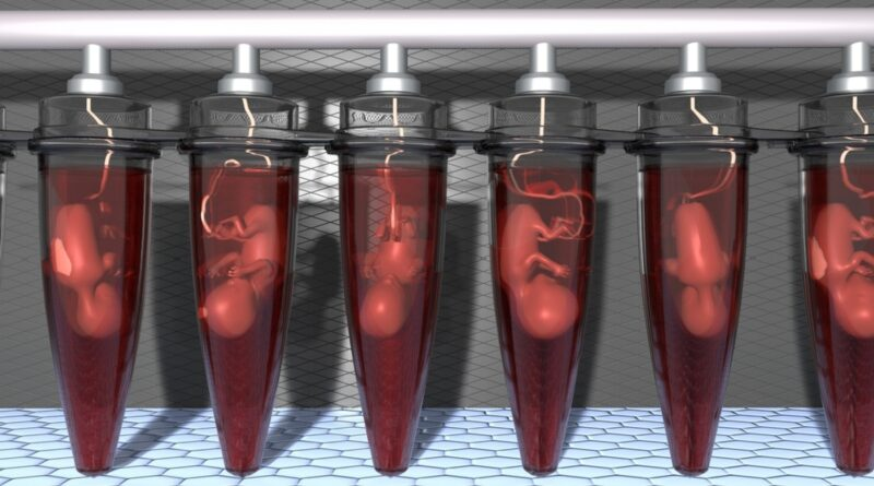 foetus vaccin covid